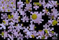 kostenlose puzzlespiele